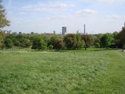 London from Primrose Park