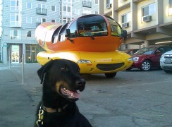Milo and the Wienermobile