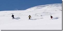 Groth Ski Poster