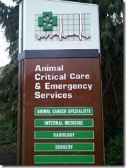 The emergency vet hospital