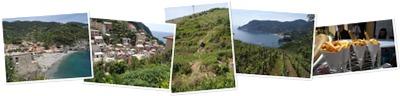 View Cinque Terre 2015