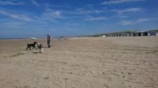 Big beach