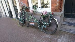 Colorful bikes 2