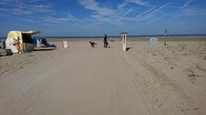 Ice cream shack at the beach
