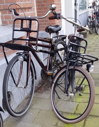 Bike lock - buddy system