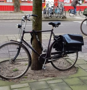 Bike lock - tree